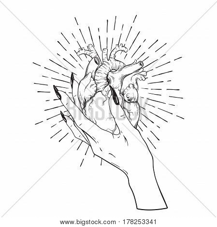 Human Heart In Graceful Female Hand Isolated. Sticker, Print Or Blackwork Tattoo Hand Drawn Vector I