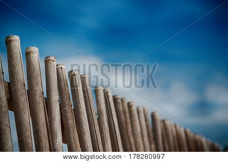 In A   Cloudy Sky  Lots Bamboo Stick For  Natural Fence