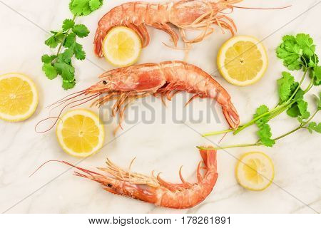 Raw shrimps with slices of lemon and cilantro sprigs, shot from above on a white marble table with a place for text