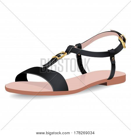 Vector shoes, women's black sandals on flat-bottomed with straps, isolated on white background