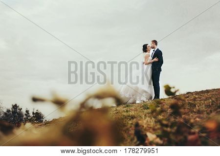 A Look From The Fallen Leaves On A Wedding Couple Kissing On The Hull