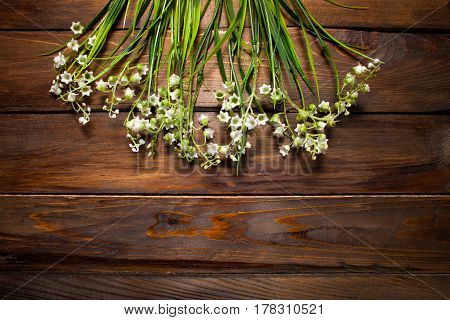 Beautiful Spring Flowers Lily Of The Valley On Woodward Wooden Background