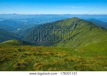 Green Mountain Ridges And Alpine Meadows