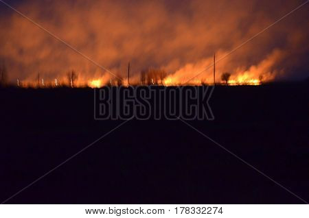 Fire in nature - problems in nature causing a negative impact in the environment