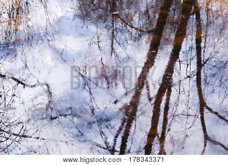 Beautiful reflection of tree branches in the water in early spring in the park. Watercolor abstract background in lilac-blue tones