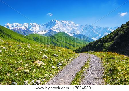 From the broad road with stones can be seen extremely picturesque green hills and snow-covered rocky Shkhara mountain. Upper Svaneti Georgia Europe. Happy lifestyle. Beautiful universe.