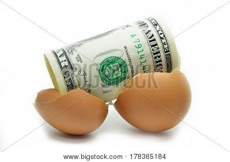 Us Dollar On Cracked Egg