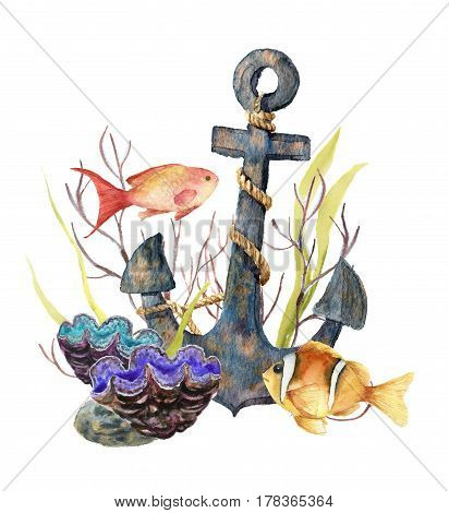 Watercolor tropic sea card. Hand painted tropic fish, old anchor, sea anemones, seaweeds isolated on white background. Underwater illustration for design, fabric or print