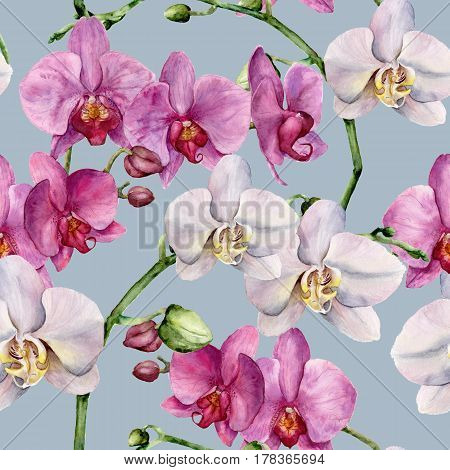 Watercolor pattern with white and pink orchids. Hand painted floral botanical ornament. For design, fabric or print