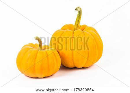 pumpkin on the white background do holloween object.