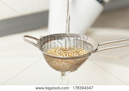 Washing quinoa seeds in sieve over sink