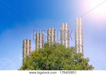 Piles Of Coins Arranged As A Graph On Tree With Blue Sky Background,