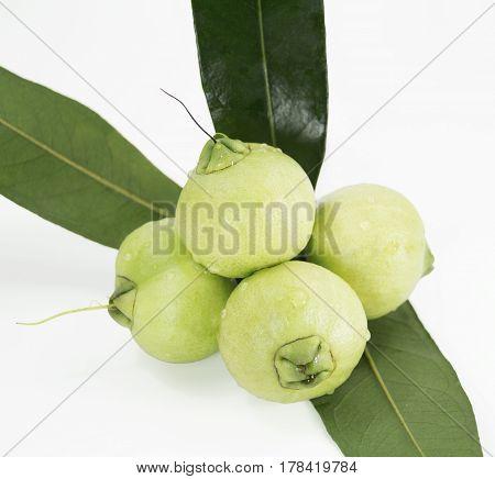 Syzygium jambos or rose apple isolated on white background