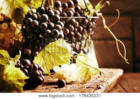Grapes with leaves in a metal basket on vintage wooden table, close-up.