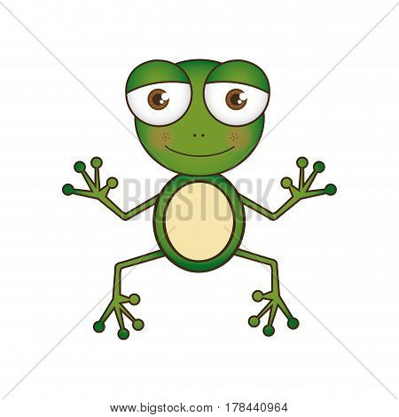 colorful picture cartoon cute toad amphibian vector illustration