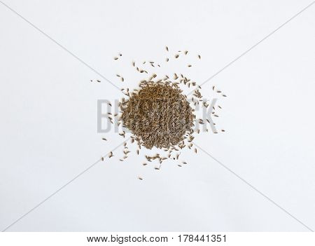 Spilled pile of cumin seeds are isolated on a white background