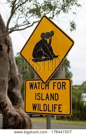Traffic sign showing a koala, Raymond Island, Victoria, Australia