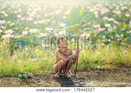 Little boys sitting and playing water under lotus leaf Asian kid smiling and happiness playing water under lotus leaf after raining day at countryside in Thailand.