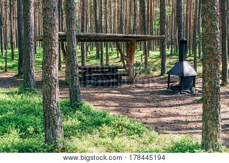 Camping place with wooden table and grill in summer forest. Well organized campsite