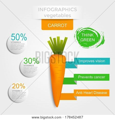 Healthy vegetables infographics with carrot vitamins and minerals. Quality vector illustration about diet eco food benefits of vegan and nutrition concept.