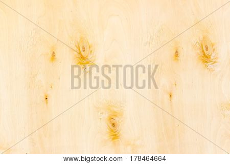 Background of the surface of the birch rotary cut veneer with several knots closeup