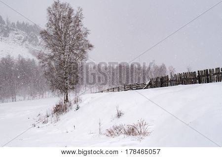 View of snow fall at the field of Irkutsk in Russia