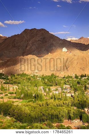 Bird's eye view of city of Leh in Ladakh, Kashmir and surrounding mountains