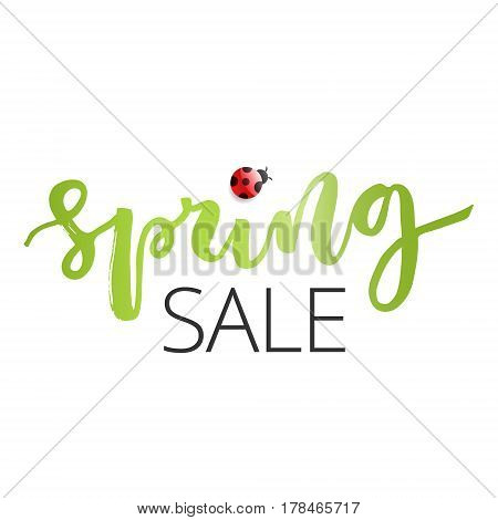 Spring sale hand written inscription with ladybug on white background