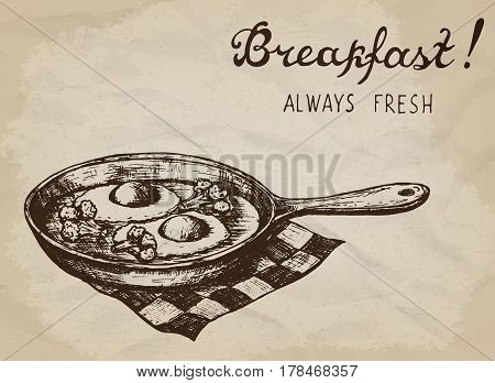 Fried eggs with broccoli on the pan. Hand drawn vector illustration.