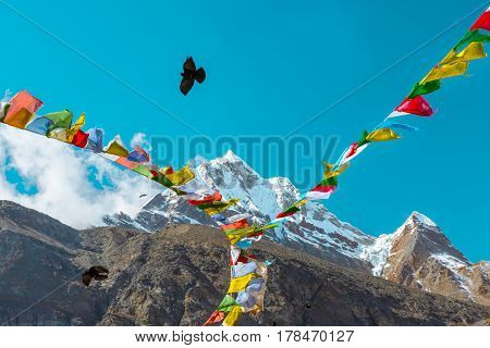 View of High Altitude Peak covered by Glacier traditional Buddhism prayer colorful Flags and Crow flying