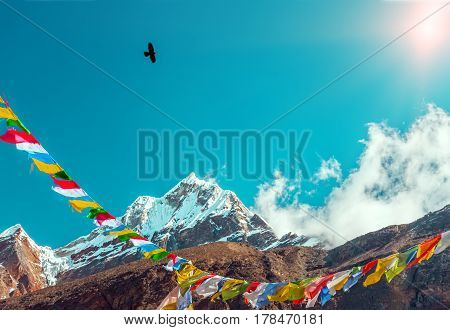 View of High Altitude Peak covered by Glacier traditional Buddhism prayer colorful Flags and Crow flying toward shining Sun