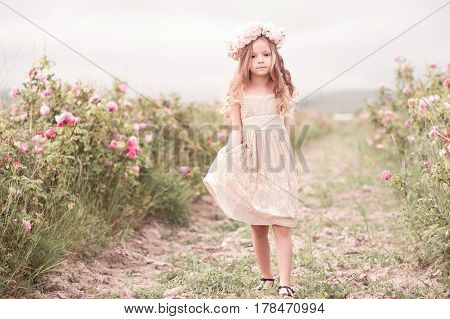Cute child girl 4-5 year old walking in rose field wearing stylish dress. Looking at camera. Summer time.