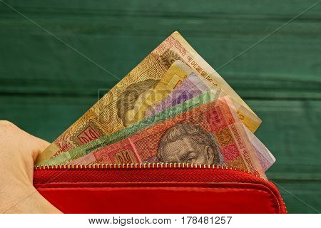 Red wallet with money on a green background