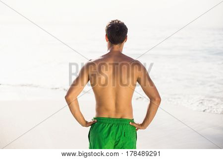 Rear view of man in swim shorts standing on the beach on a sunny day