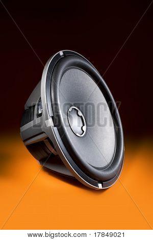 Speaker / Sub-woofer