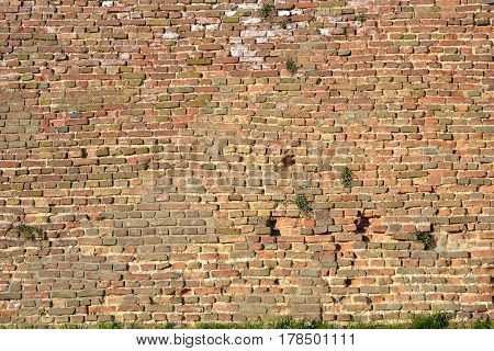 Red brick wall with vintage look Backgrounds