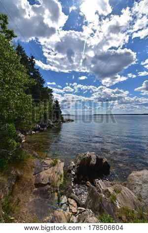 Rocks and trees lining the coast of an island in Casco Bay Maine.