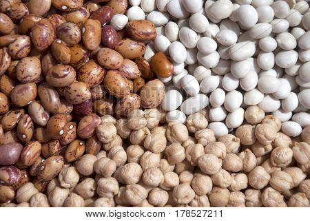 Mixed dried beans and chickpea.Multicolored mixed dried beans  Dried beans, chickpeas, kidney beans