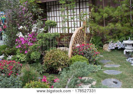 Peaceful Zen Rock Garden With Papyrus Plant
