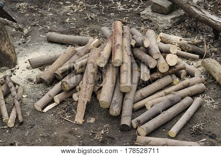 Sawlogs Firewood In The Garden