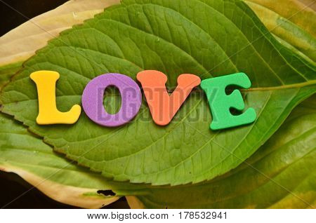 word love on a  abstract colorful background