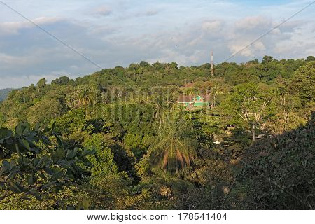 Green house in the rainforest above the Drake Bay in Costa Rica