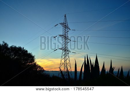 Electric tower backlit at dawn,view from below among plants