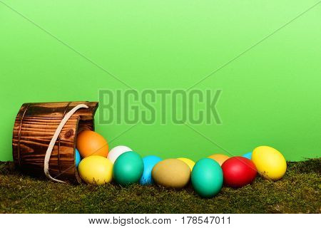Painted Easter Colorful Eggs In Wooden Bucket With Green Moss