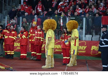 The Official Mascot Of The National Football Team Of Romania