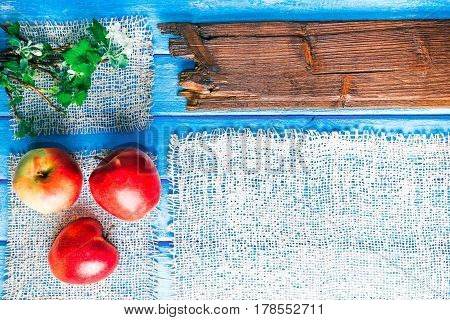 Background of narrow wood planks painted in blue. Bunch of blooming apple tree and young black current twigs. Red apples in the corner. Wood signboard as title bar
