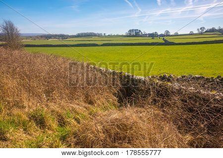 A dry stone walls on farmland in the Lake District Cumbria