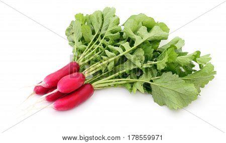 Fresh red radish isolated on white background.