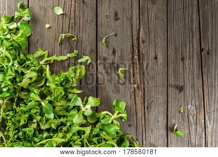 Salad Leaves On Wooden Table