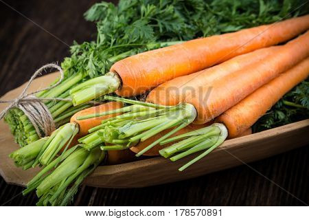 Fresh young bunch of carrots and leaves. Suitable for vegetarians and vegans.